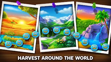 Solitaire – Grand Harvest